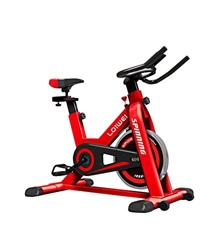 Riscko Bicicleta de Spinning Bicicleta Estática Sport con Volante de inercia de 6 Kg Garona*
