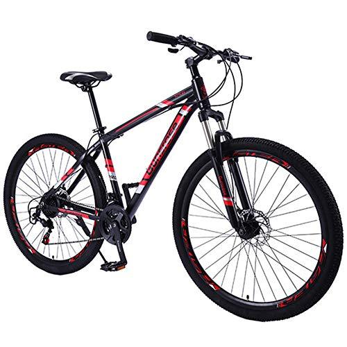 RSTJ-Sjef Bicicleta De Montaña De Nieve De Velocidad Variable De 29 Pulgadas para Adultos Y Niños,...*