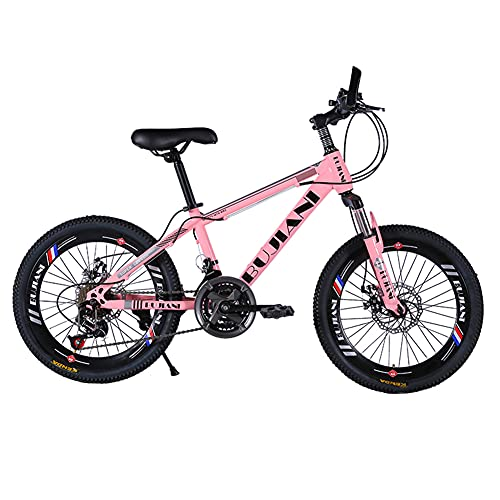 SHANJ Bicicleta de Montaña de 20/22/24 Pulgadas para Niños y Adolescentes de 6 a 17 años, 7-24...*
