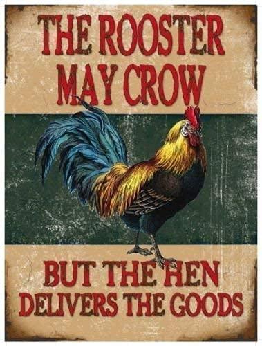 El gallo may crow pero la gallina proporciona la mercancías. Doble significado, cartel divertido para casa, casa, bar, pub, Café, tienda o cocina, cena etc Metal/Cartel De Acero Para Pared - 30 x 40 cm