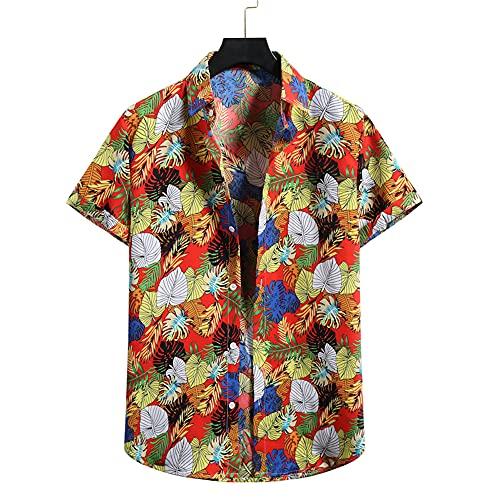 Shirt Hawaiana Hombre Verano con Estampado Vintage Hombre Camisa Transpirable con Botones De Cuello Kent Hombre Shirt Ocio Manga Corta Moderna Acampar Hombre Shirt Playa D-02 XXL
