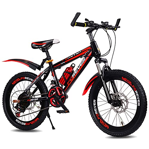 FUFU Bici Amortiguador De 20 Pulgadas, Bicicleta De Montaña De Velocidad Variable, Adecuada para...*