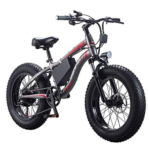 D&XQX 20 Pulgadas Bicicleta eléctrica 350W 36V 10AH de Litio extraíble de Bicicletas de montaña...*