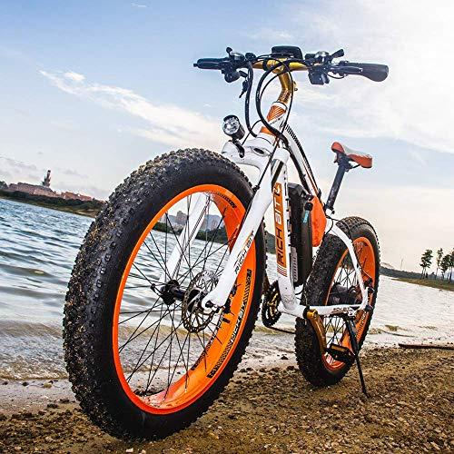 RICH BIT RT022 1000W 48V 17Ah Bicicleta Ciclo Cruiser EBike Bicicleta Eléctrica * Batería de alta...*