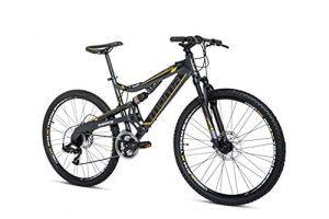 Bicicleta Equinox