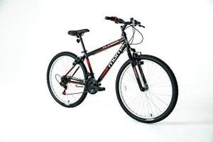Bicicleta Globetrotter