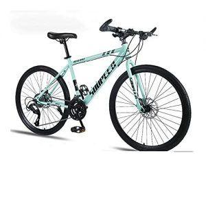 Sillin Bicicleta Bianchi
