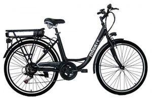 Bicicleta Eléctrica Grande