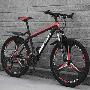 Orbea Sport 30