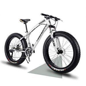 Bicicleta Eléctrica Xds