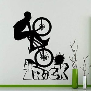 Club Olimpico BMX Madrid