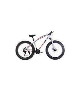 Bicicleta Fat Bike 26