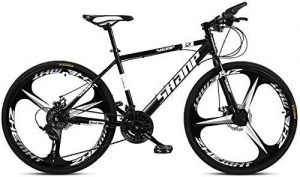 Bicicleta Gocycle