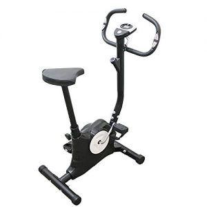 Bicicleta Cardio Gym