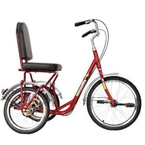 Bicicletas para Principiantes Adultos