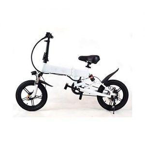 Bicicleta Eléctrica en Watt