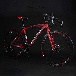 Bicicleta Gravel Acero