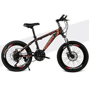 Bicicleta Montaña Niño de 20 Pulgadas