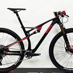 Bicicleta Doble Suspensión 29 Carbono