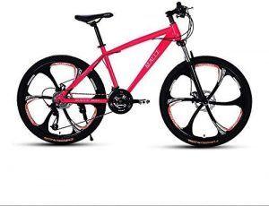 Bicicleta Doble Proposito