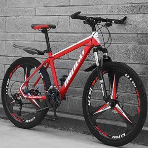 Bicicleta Mérida 24 Pulgadas