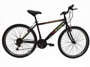 Bicicleta sin Marchas