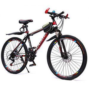 Bicicleta Doble para Adulto y Niño
