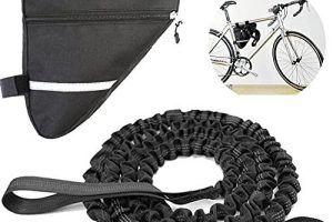 Bicicleta Eléctrica con Remolque para Adultos