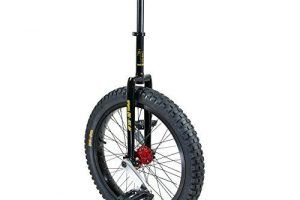 Monociclo Casero