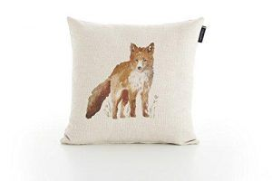 Outlet Fox
