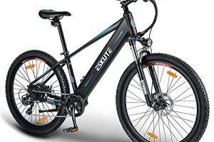 Bicicleta Eléctrica Giant Ruido Motor
