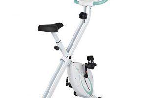 Bicicleta Elíptica Media Hora Diaria