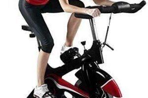 Bicicleta Elíptica Viva Gym